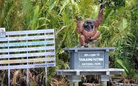 Tanjung Puting National Park, Central Borneo National Park