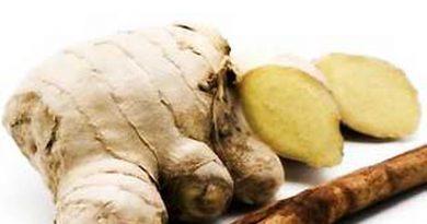 Saluang Balum, Obat Tradisional Dayak untuk Pria agar Perkasa